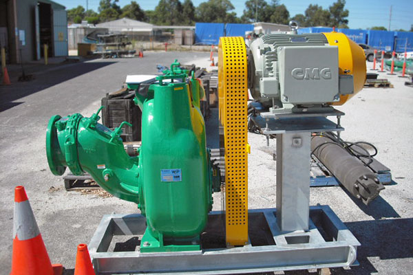 Plant Service Water Pumps